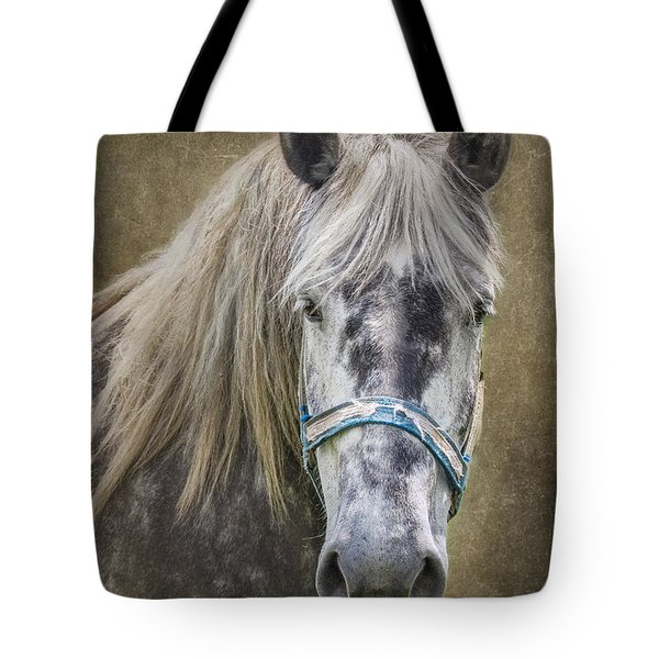 Horse Portrait I Tote Bag