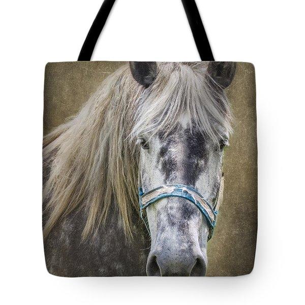 Horse Portrait I Tote Bag