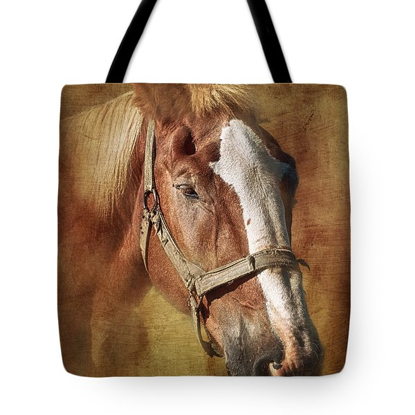 Horse Portrait II Tote Bag