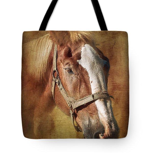 Horse Portrait II Tote Bag