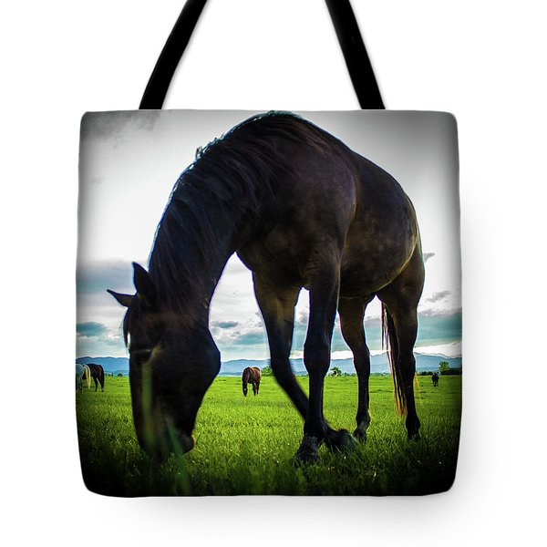 Tote Bag featuring the photograph Horse Time by Tyson Kinnison