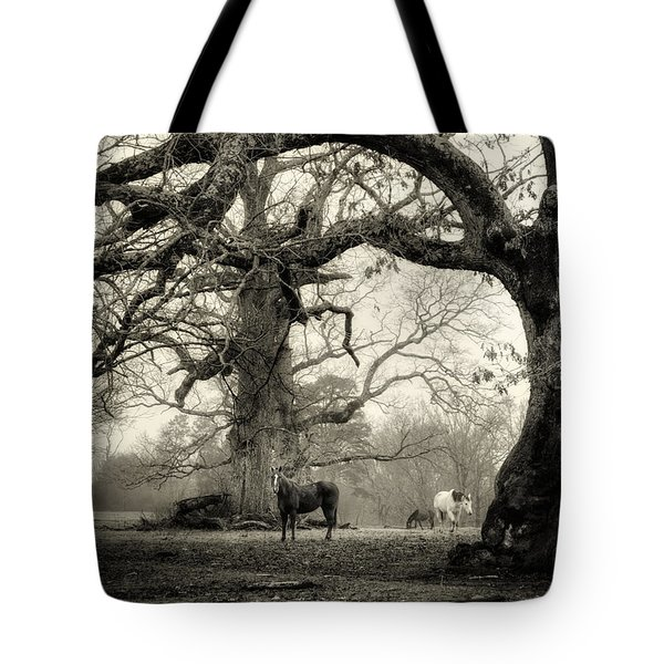 Horse Under Tree In Black And White Tote Bag