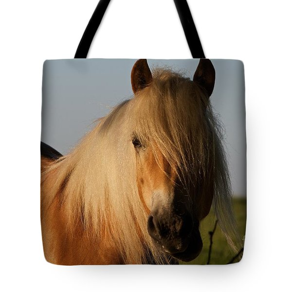 Horse With No Name Tote Bag
