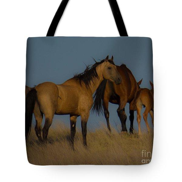 Horses 1 Tote Bag