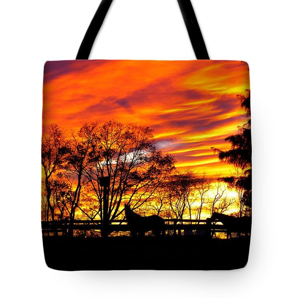 Horses And The Sky Tote Bag by Donald C Morgan