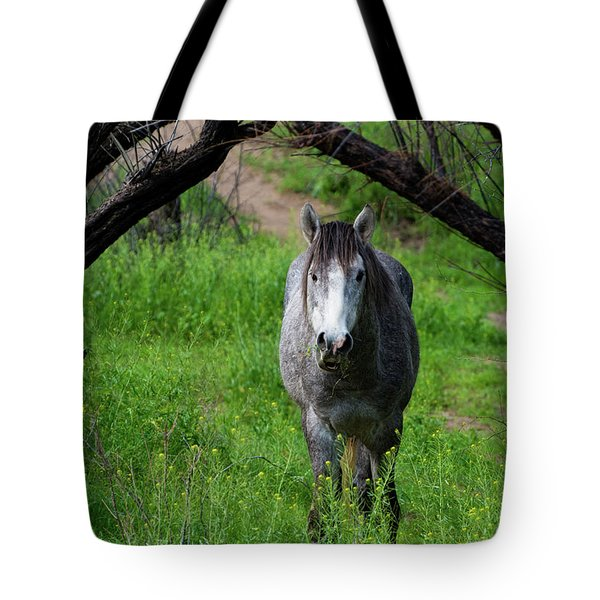 Horse's Arch Tote Bag