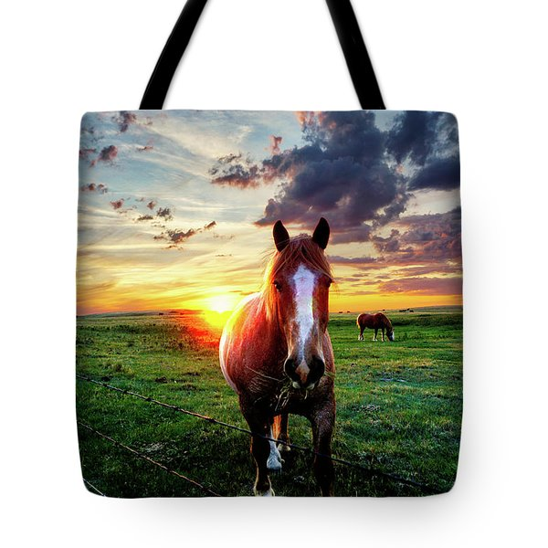 Horses At Sunset Tote Bag