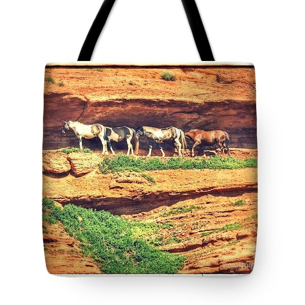 Horses Basking In The Sun Tote Bag