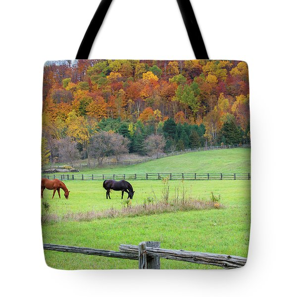 Horses Contentedly Grazing In Fall Pasture Tote Bag