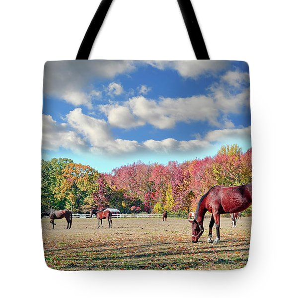 Horses Grazing At A Stable In Maryland Tote Bag