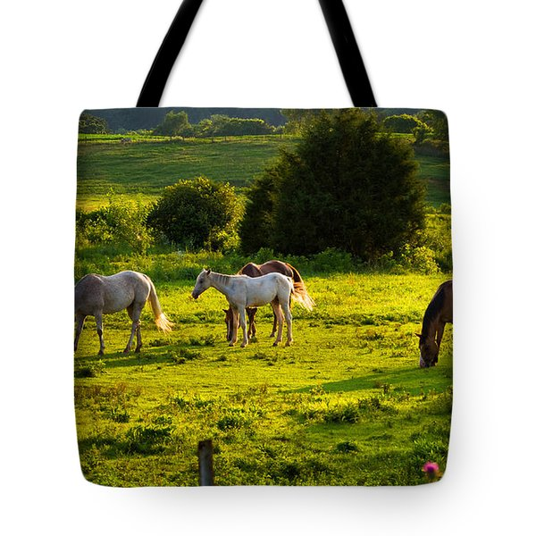 Horses Grazing In Evening Light Tote Bag
