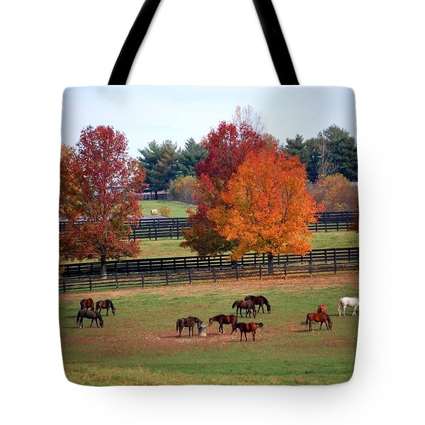 Horses Grazing In The Fall Tote Bag by Sumoflam Photography