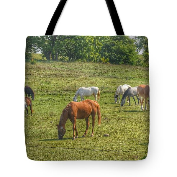 1003 - Horses In A Pasture I Tote Bag