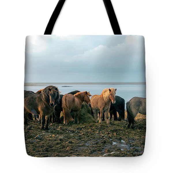 Tote Bag featuring the photograph Horses In Iceland by Dubi Roman