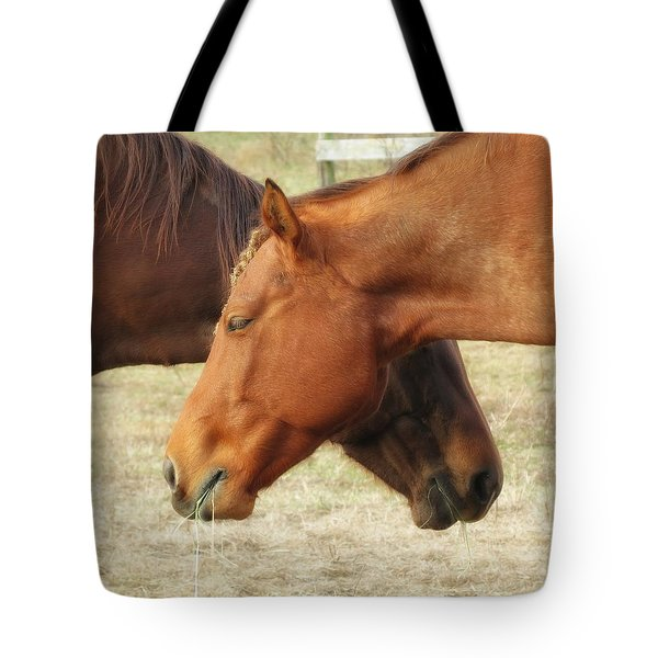 Horses In Sinc Tote Bag by MTBobbins Photography