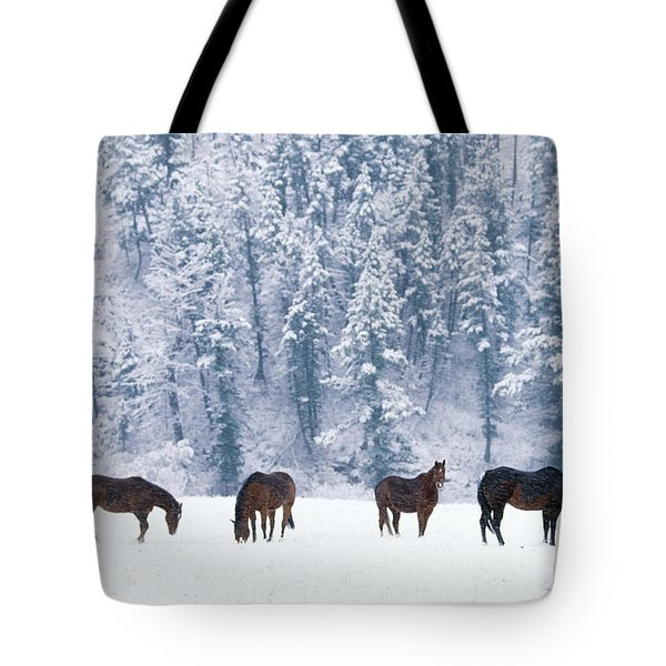 Horses In The Snow Tote Bag by Alan and Sandy Carey and Photo Researchers