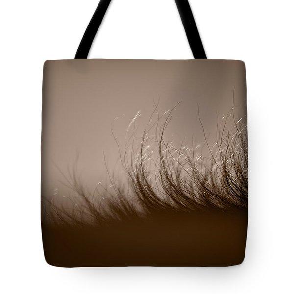 Horses Mane Tote Bag by Steve Gadomski