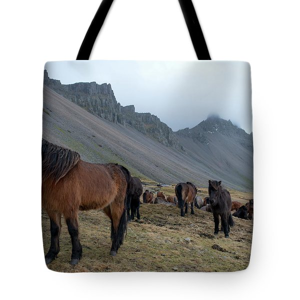 Tote Bag featuring the photograph Horses Near Vestrahorn Mountain, Iceland by Dubi Roman