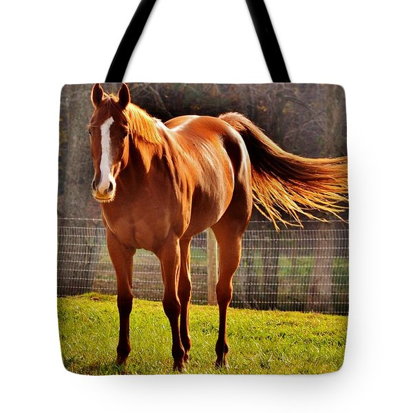 Horse's Tail Tote Bag