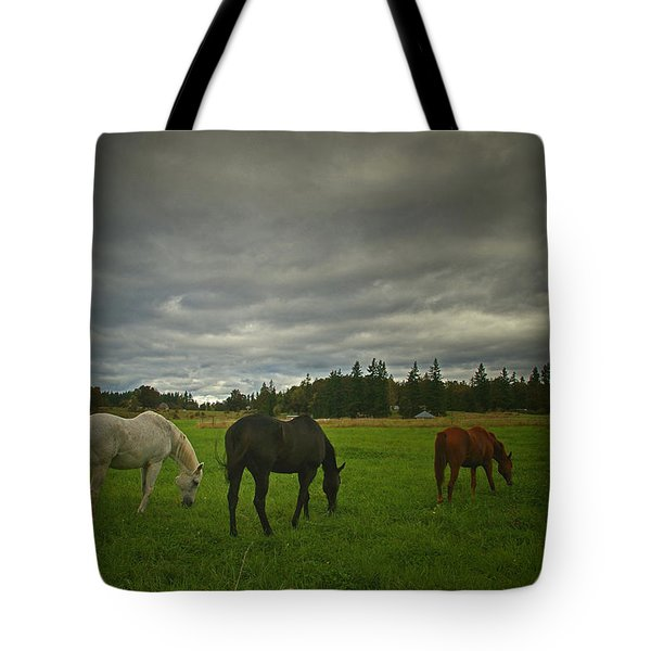 Horses Under Heavy Sky Tote Bag