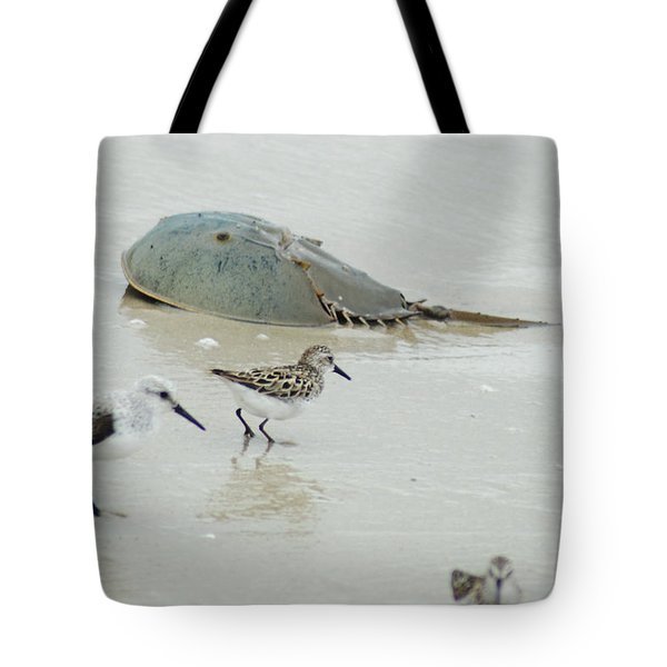 Tote Bag featuring the photograph Horseshoe Crab With Migrating Shorebirds by Richard Bryce and Family