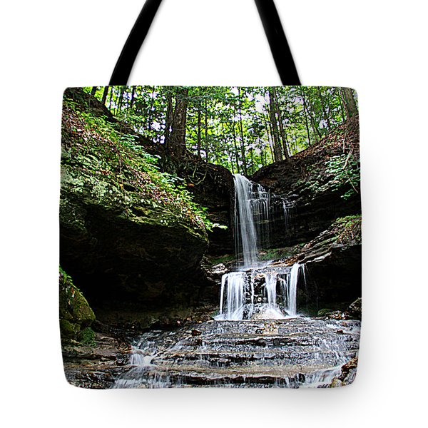 Horseshoe Falls #6736 Tote Bag