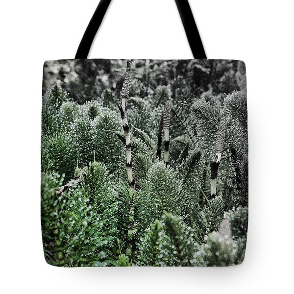Horsetail Dewpoint Tote Bag