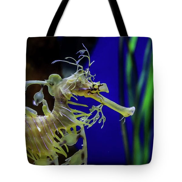 Tote Bag featuring the photograph Horsey by T A Davies