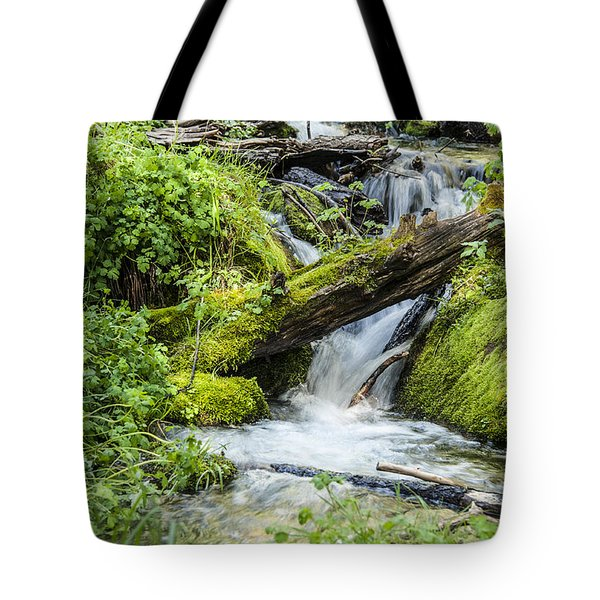 Tote Bag featuring the photograph Horton Springs by Anthony Citro