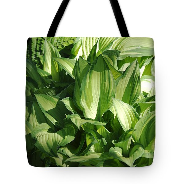 Hosta 5416 Tote Bag
