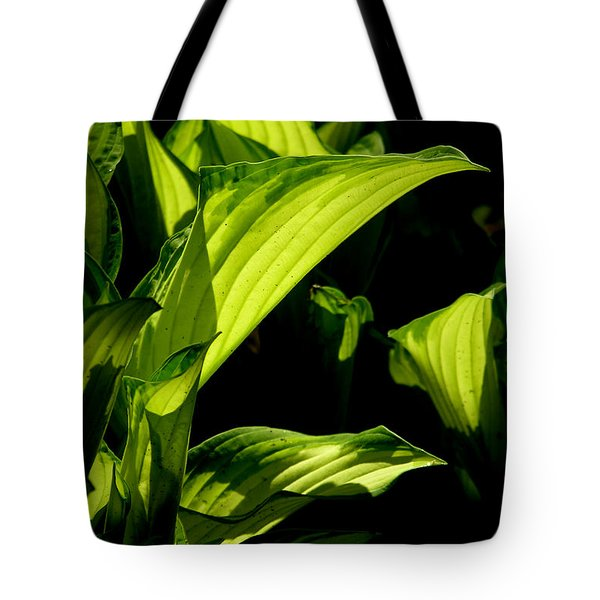 Hosta 561 Tote Bag