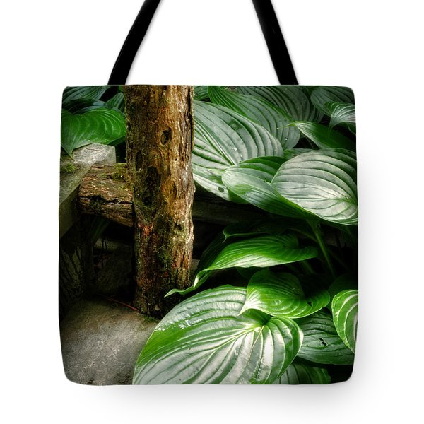 Tote Bag featuring the photograph Hosta And Steps by Greg and Chrystal Mimbs
