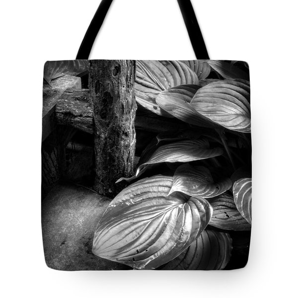 Hosta And Steps In Black And White Tote Bag