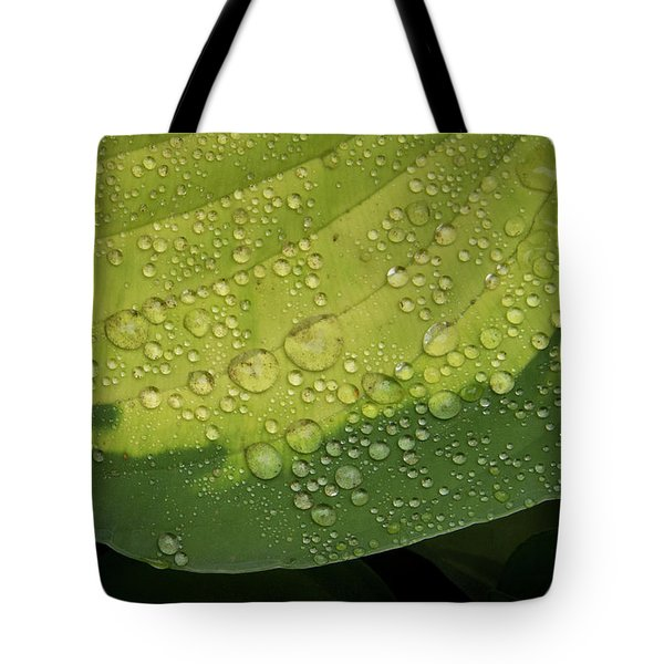 Tote Bag featuring the photograph Hosta Drops by Jean Noren