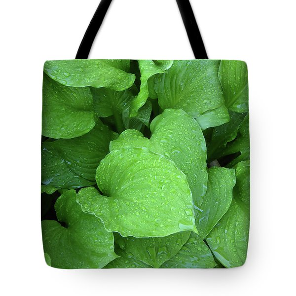 Hostas After The Rain IIi Tote Bag