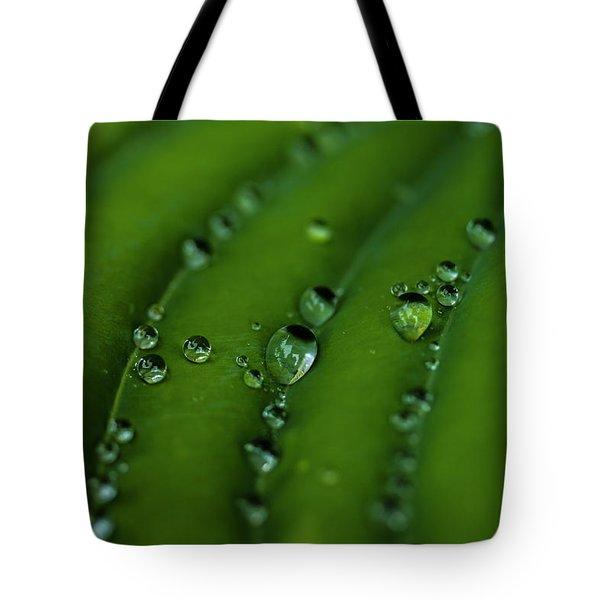 Hostas And Raindrops Tote Bag