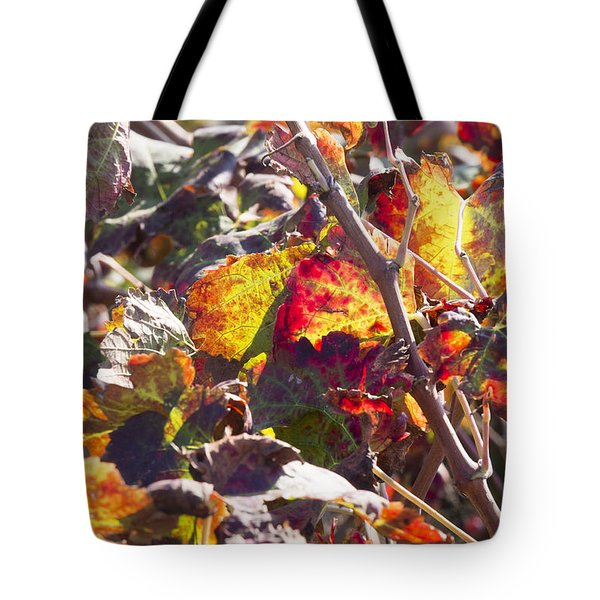 Tote Bag featuring the photograph Hot Autumn Colors In The Vineyard 02 by Arik Baltinester
