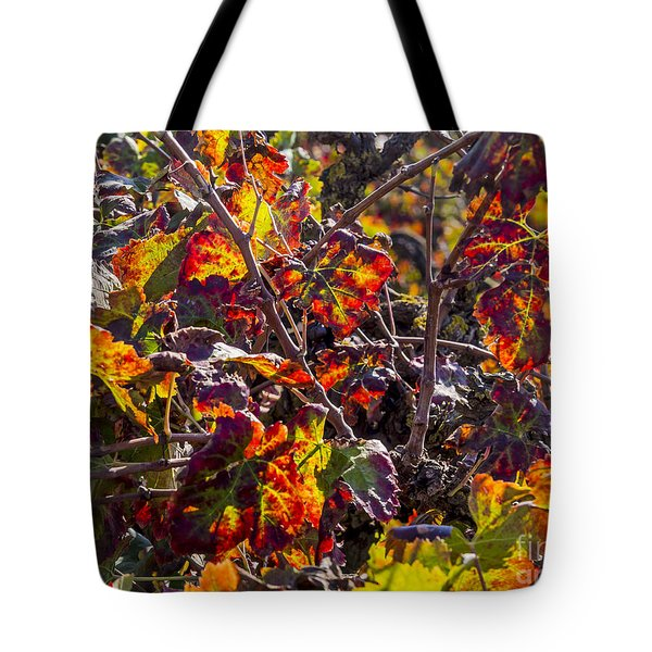 Hot Autumn Colors In The Vineyard 03 Tote Bag