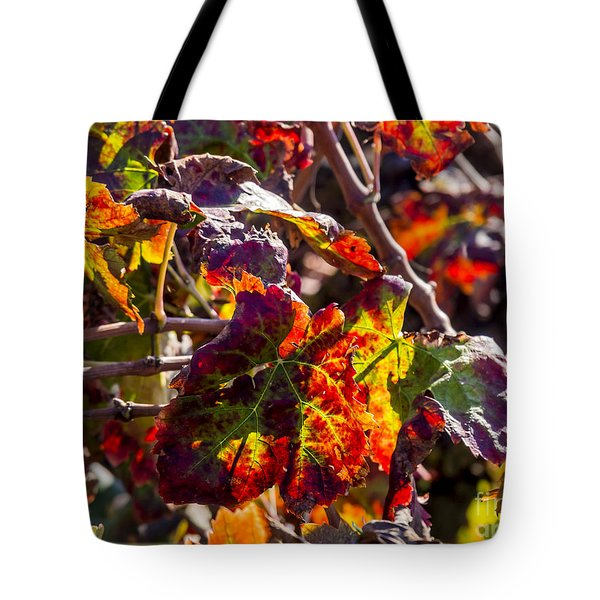 Hot Autumn Colors In The Vineyard 04 Tote Bag