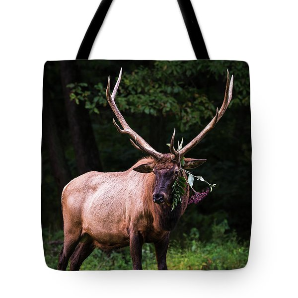 Tote Bag featuring the photograph Hot Date Tonight by Andrea Silies