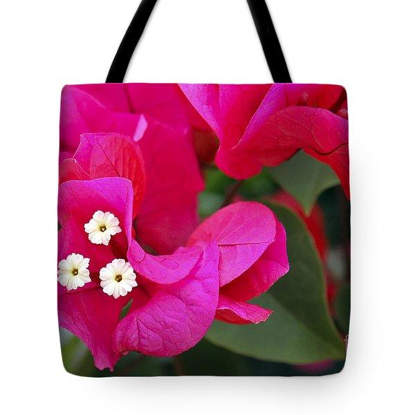 Hot Pink Bougainvillea Tote Bag
