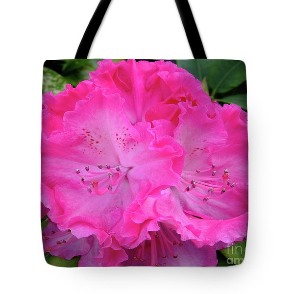 Hot Pink Rhoda Tote Bag