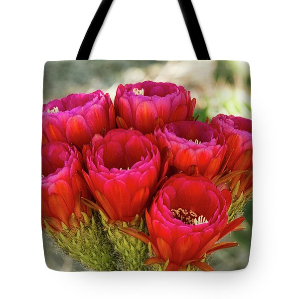 Tote Bag featuring the photograph Hot Pink Torch Cactus Bouquet  by Saija Lehtonen