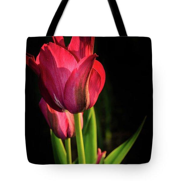 Hot Pink Tulip On Black Tote Bag