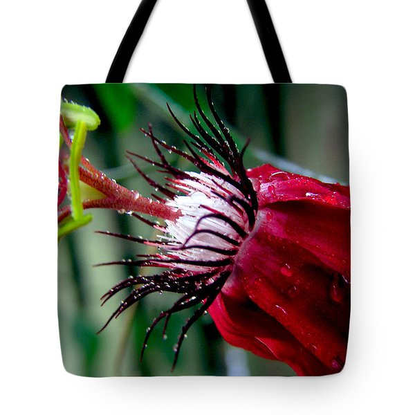 Hot Red Passion Tote Bag