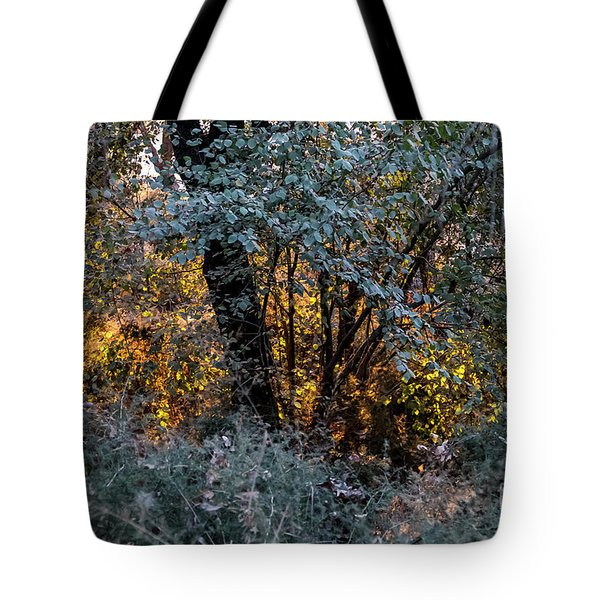 Hot Sunset In The Forest Tote Bag