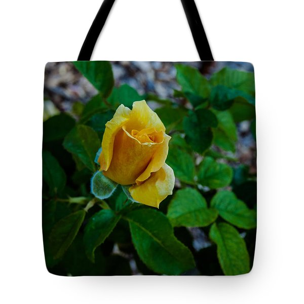 Hotel California Tote Bag