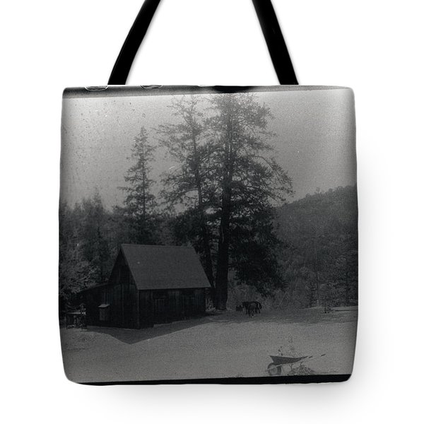 House And Horse Tote Bag