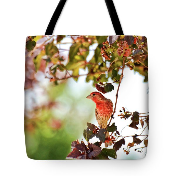 Tote Bag featuring the photograph House Finch Hanging Around by Kerri Farley