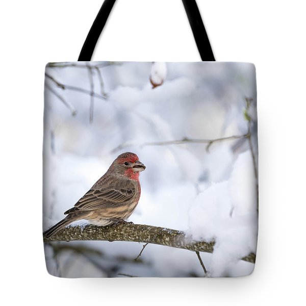 Tote Bag featuring the photograph House Finch In Snow by Brian Bonham